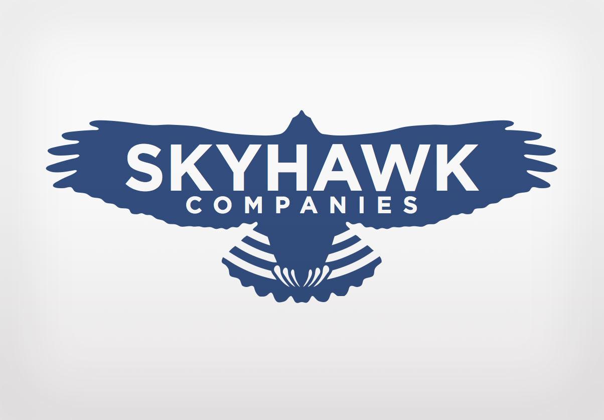 DepartmentD.com - Skyhawk Companies - Blue Logo